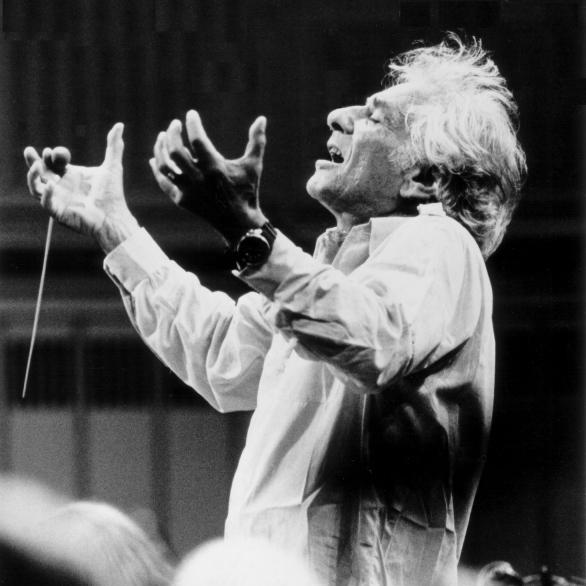 Bernstein 100: MASS