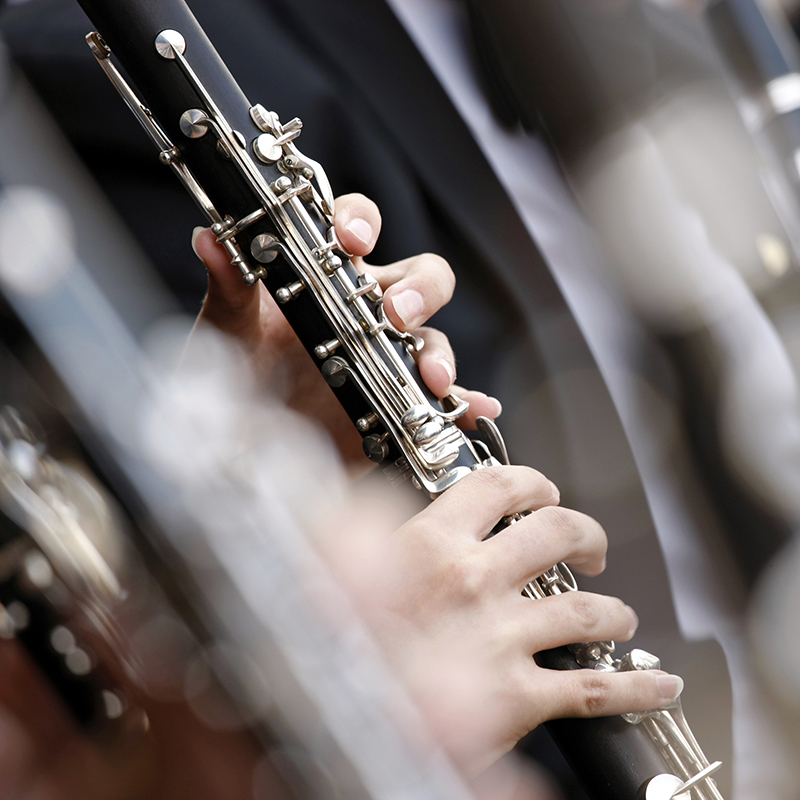 RSNO   Daytime and Early Evening Concerts